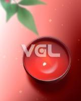 ST-VGL-B04